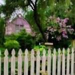 13-LavenderHouse&Flowers