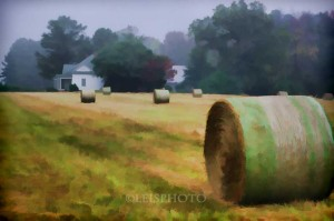 Raleigh Hay Rolls