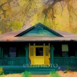 Green House -2